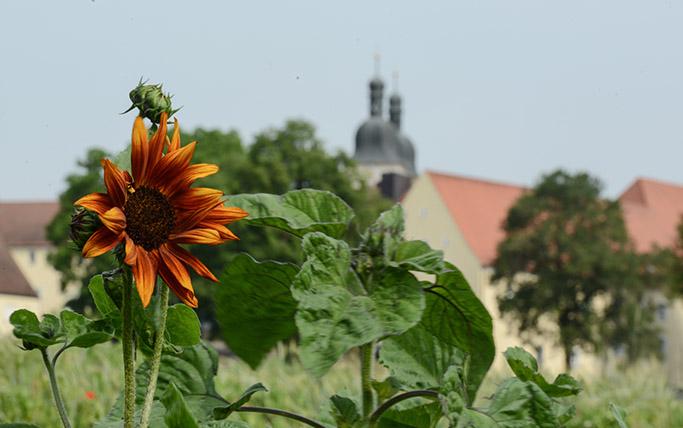 Kloster-Plankstetten